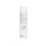 Evo Style Helmut Light Strong Hairspray-tugev aerosool juukselakk 100 ml