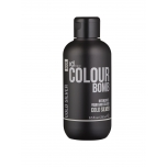 IdHAIR Colour Bomb Cold Silver 1001  250 ml